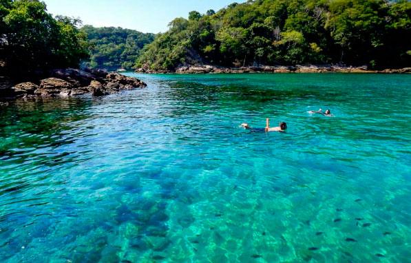ilha-experience